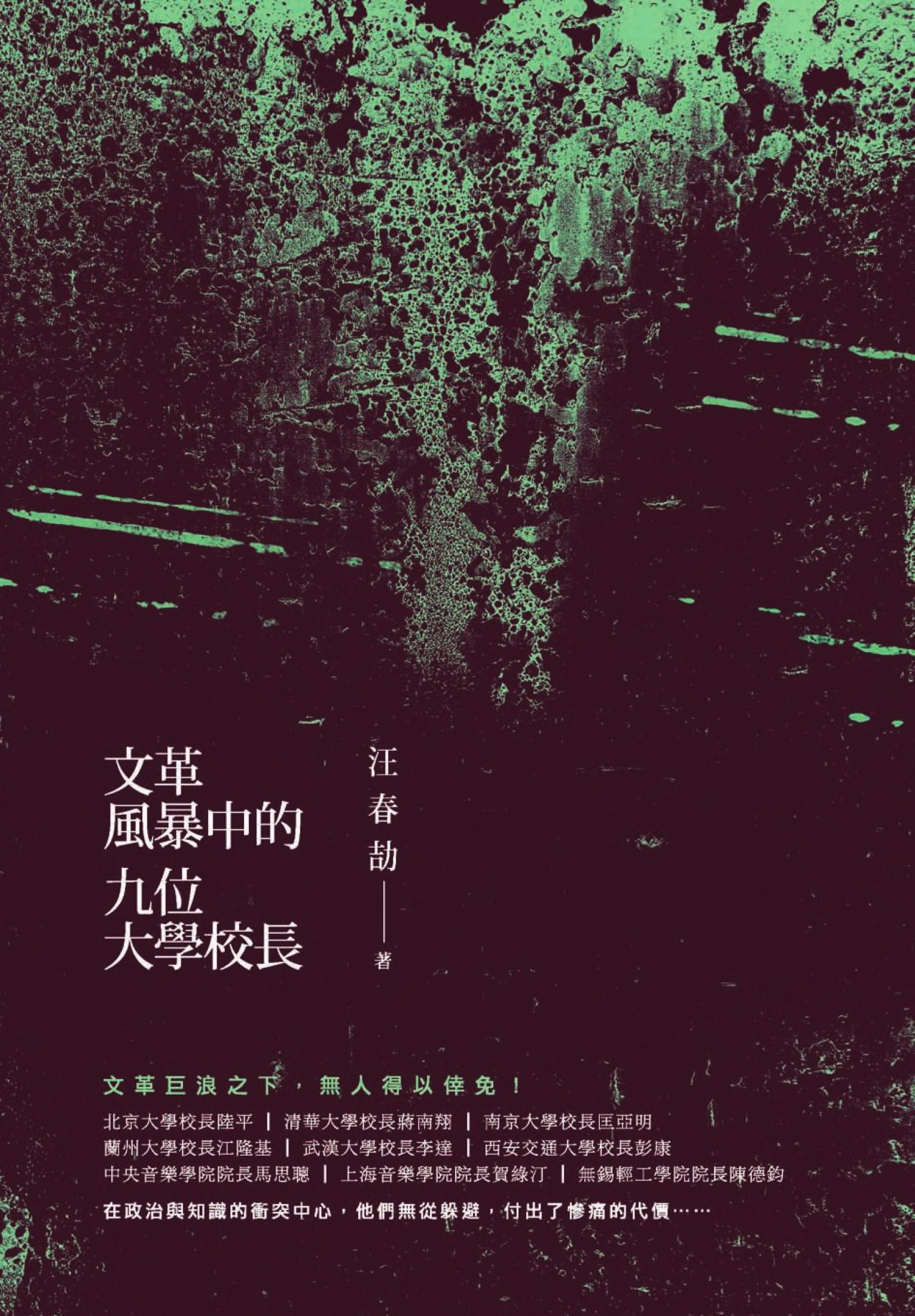 Book cover 文革風暴中的九位大學校長