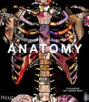 Book cover Anatomy: Exploring the Human Body