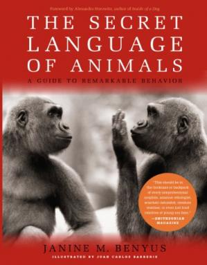 Buchdeckel The Secret Language of Animals: A Guide to Remarkable Behavior