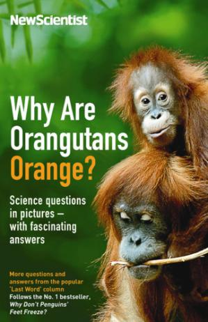 Обложка книги Why Are Orangutans Orange?: Science Questions in Pictures - With Fascinating Answers: More Questions and Answers from the Popular 'Last Word' Column