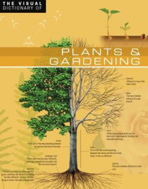 Book cover The Visual Dictionary of Plants & Gardening