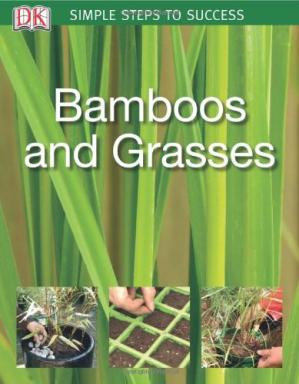 Book cover Bamboos & Grasses (SIMPLE STEPS TO SUCCESS)