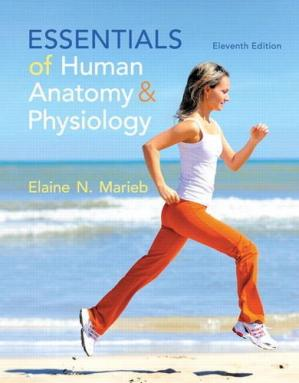 Book cover Essentials of Human Anatomy and Physiology
