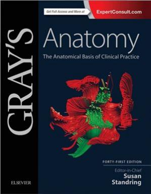 A capa do livro Gray's Anatomy. The Anatomical Basis of Clinical Practice. Part 1