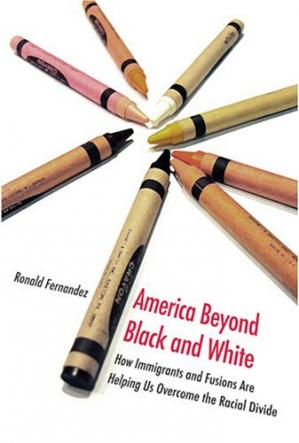 Couverture du livre America Beyond Black and White: How Immigrants and Fusions Are Helping Us Overcome the Racial Divide (Contemporary Political and Social Issues)