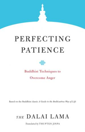 Book cover Perfecting Patience: Buddhist Techniques to Overcome Anger (Core Teachings of Dalai Lama Book 1)