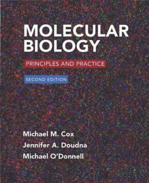 Book cover Molecular Biology: Principles and Practice