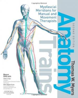 Book cover Anatomy Trains: Myofascial Meridians for Manual and Movement Therapists 2nd Edition