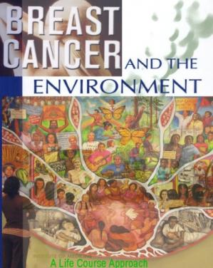 Couverture du livre Breast Cancer and the Environment: A Life Course Approach