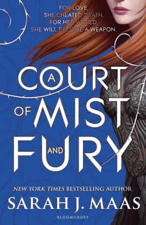 Book cover A Court of Mist and Fury