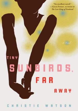 Couverture du livre Tiny Sunbirds, Far Away