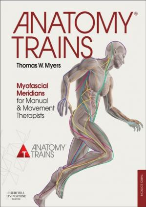 Buchdeckel Anatomy Trains: Myofascial Meridians for Manual and Movement Therapists