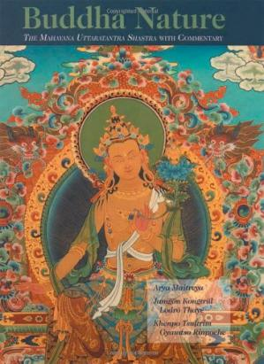 Couverture du livre Buddha Nature: The Mahayana Uttaratantra Shastra with Commentary