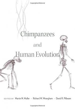 Обложка книги Chimpanzees and Human Evolution