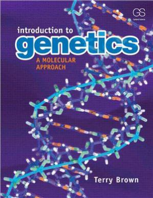 Copertina Introduction to Genetics: A Molecular Approach