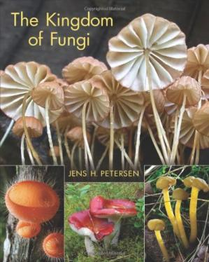 Book cover The Kingdom of Fungi