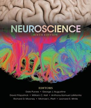 Book cover Neuroscience