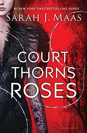 Book cover A Court of Thorns and Roses