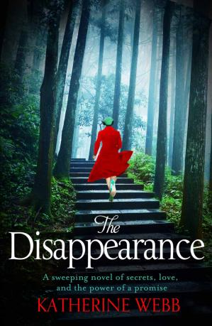 Book cover The Disappearance