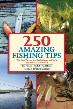 Обкладинка книги 250 amazing fishing tips : the best tactics and techniques to catch any and all game fish : bass, trout, panfish and more!
