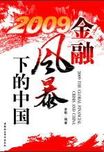 Book cover 2009金融风暴下的中国