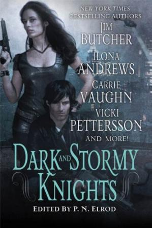 Book cover Dark and Stormy Knights