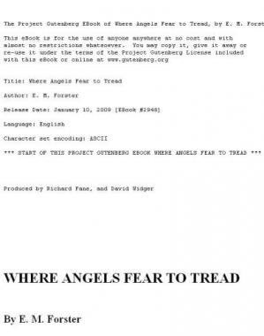 Book cover Where Angels Fear to Tread