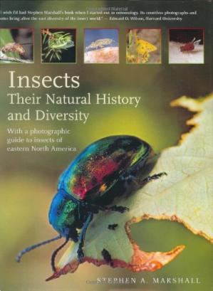 Okładka książki Insects: Their Natural History and Diversity: With a Photographic Guide to Insects of Eastern North America