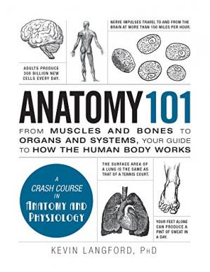 Book cover Anatomy 101: From Muscles and Bones to Organs and Systems, Your Guide to How the Human Body Works
