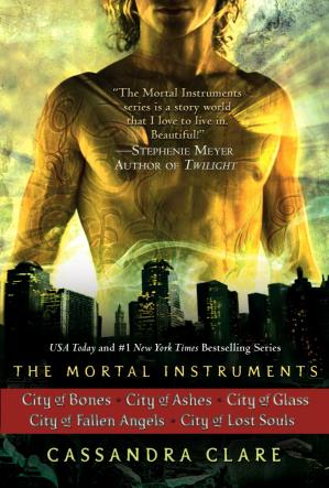 Book cover The Mortal Instruments Series, Books 1 - 5