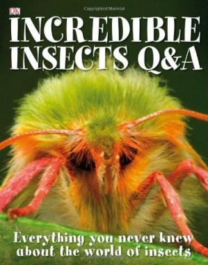 Book cover Incredible Insects Q & A