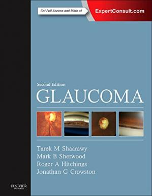 Обложка книги Glaucoma : includes medical diagnosis and therapy and surgical