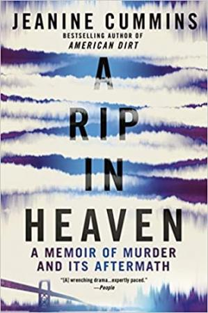 Book cover A Rip in Heaven