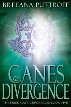 Book cover Canes of Divergence