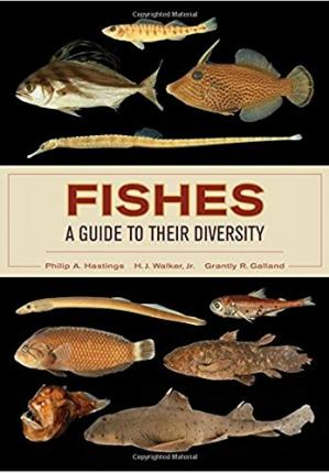 Copertina Fishes: A Guide to Their Diversity