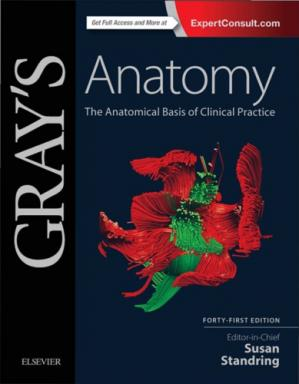 A capa do livro Gray's Anatomy: The Anatomical Basis of Clinical Practice