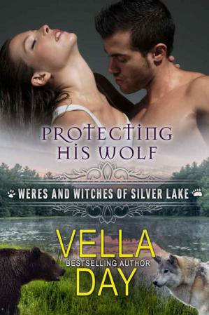 Kitap kapağı Protecting His Wolf: A Hot Paranormal Fantasy with Witches, Werebears, and Werewolves