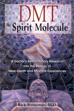 Book cover DMT: The Spirit Molecule: A Doctor's Revolutionary Research into the Biology of Near-Death and Mystical Experiences