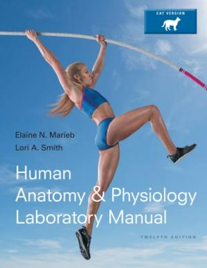 Book cover Human anatomy & physiology laboratory manual. Cat version
