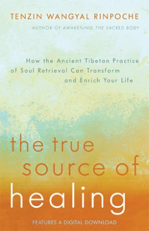 Buchdeckel The True Source of Healing: How the Ancient Tibetan Practice of Soul Retrieval Can Transform and Enrich Your Life