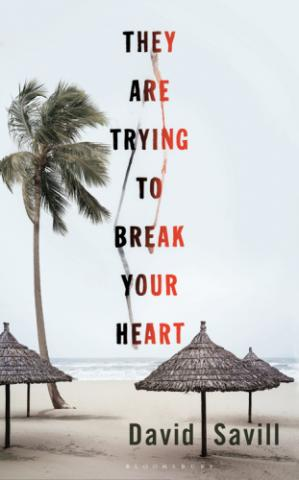 Book cover They are Trying to Break Your Heart