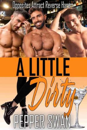 Book cover A Little Dirty: Opposites Attract Reverse Harem (Small Town Lovers Book 6)