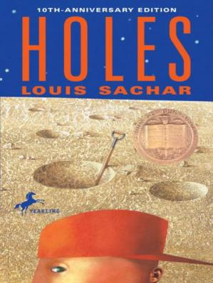 Book cover Holes