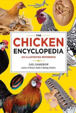 Couverture du livre The Chicken Encyclopedia  An Illustrated Reference