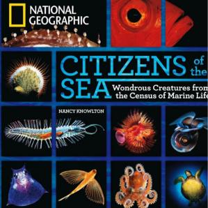 Book cover Citizens of the sea : wonderous creatures from the census of marine life