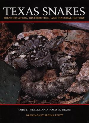 Bìa sách Texas Snakes: Identification, Distribution, and Natural History