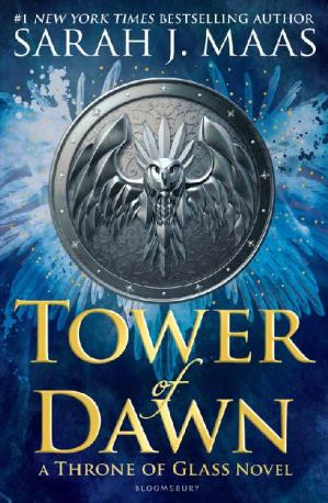 Book cover Tower of Dawn