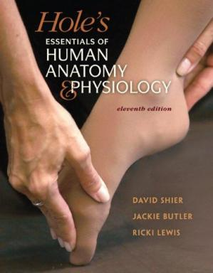 Book cover Hole's Essentials of Human Anatomy & Physiology, 11th Edition