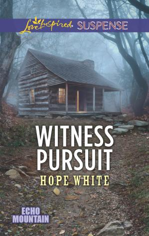 표지 Witness Pursuit