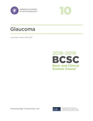 Book cover 2018-2019 BCSC (Basic and Clinical Science Course), Section 10 Glaucoma